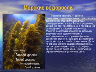 Морские водоросли Морские водоросли — древние, слоевцовые споровые растения,