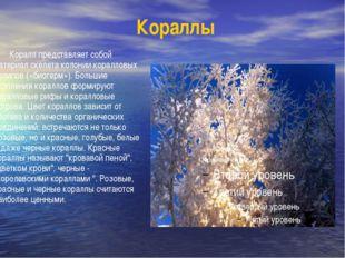 Кораллы Коралл представляет собой материал скелета колонии коралловых полипов