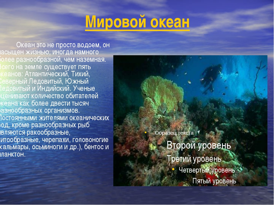 Реферат на тему: Атлантический океан | Контент-платформа ...