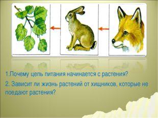 1.Почему цепь питания начинается с растения? 2. Зависит ли жизнь растений от