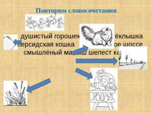Повторим словосочетания душистый горошек осколок стёклышка персидская кошка