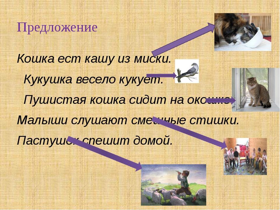 Предложение Кошка ест кашу из миски. Кукушка весело кукует. Пушистая кошка си...