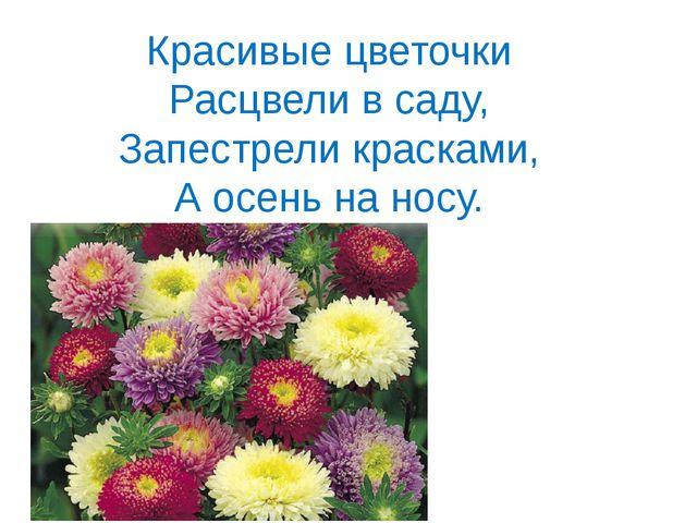 Красивые цветочки Расцвели в саду, Запестрели красками, А осень на носу.