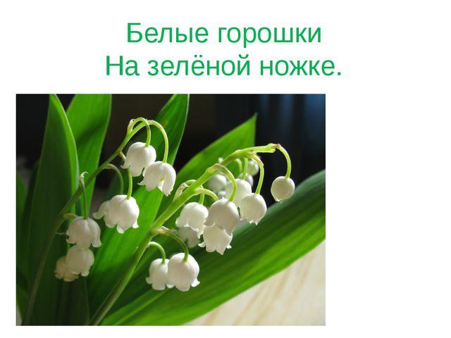 Белые горошки На зелёной ножке.