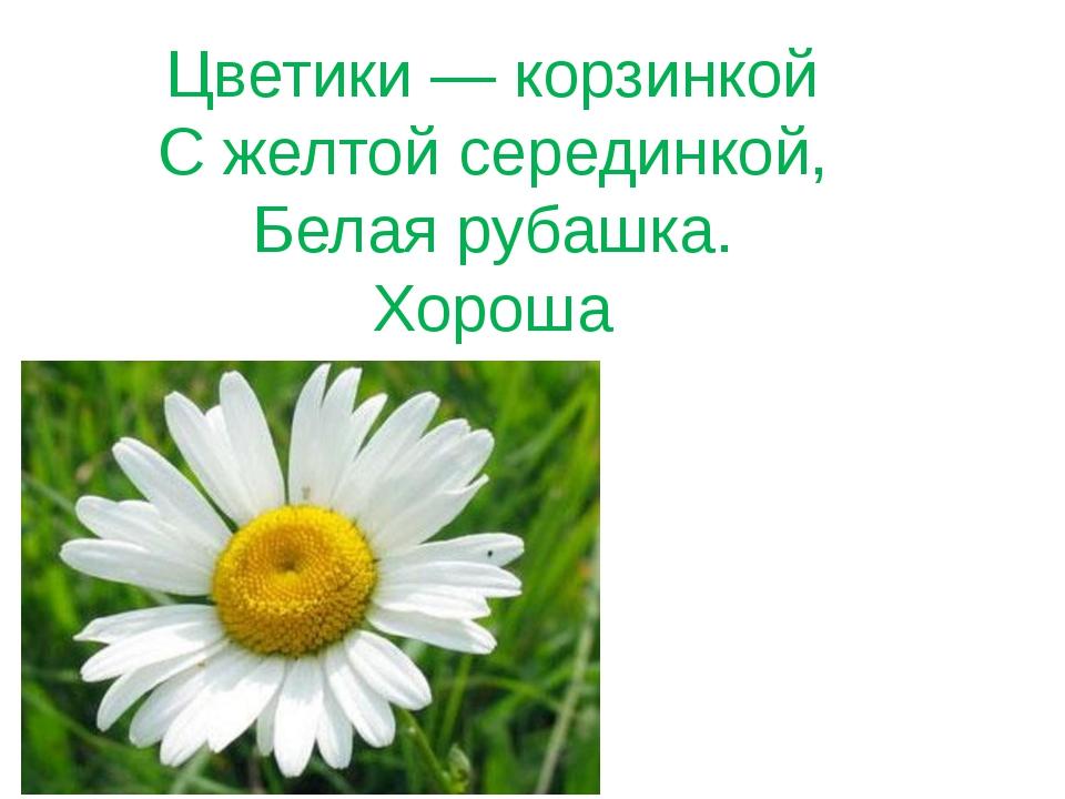 Цветики — корзинкой С желтой серединкой, Белая рубашка. Хороша
