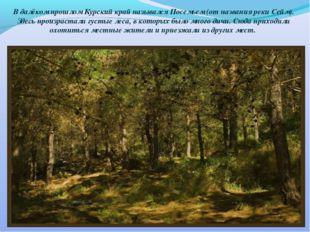 В далёком прошлом Курский край назывался Посемьем (от названия реки Сейм). Зд