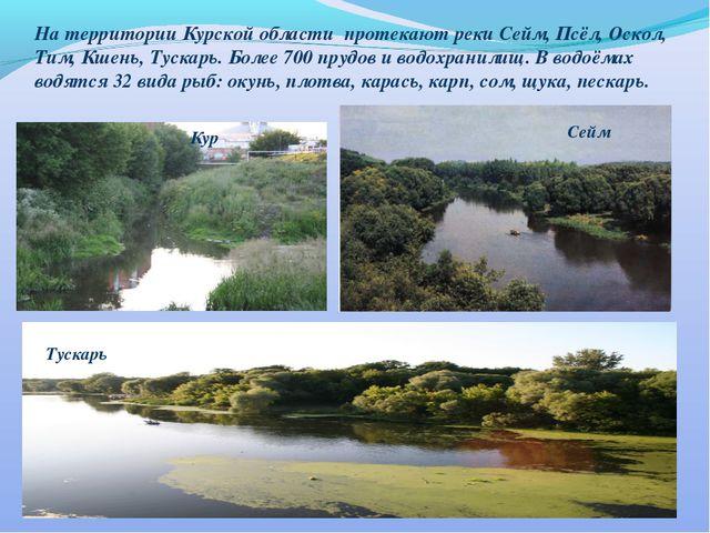 На территории Курской области протекают реки Сейм, Псёл, Оскол, Тим, Кшень, Т...