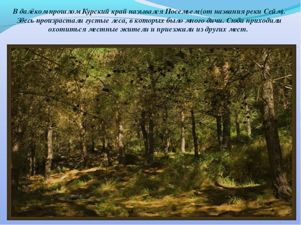 В далёком прошлом Курский край назывался Посемьем (от названия реки Сейм). Зд...