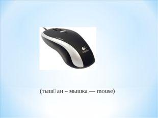 (тышқан – мышка — mouse)