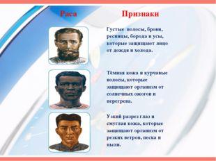 Раса Признаки Густые волосы, брови, ресницы, борода и усы, которые защищают л