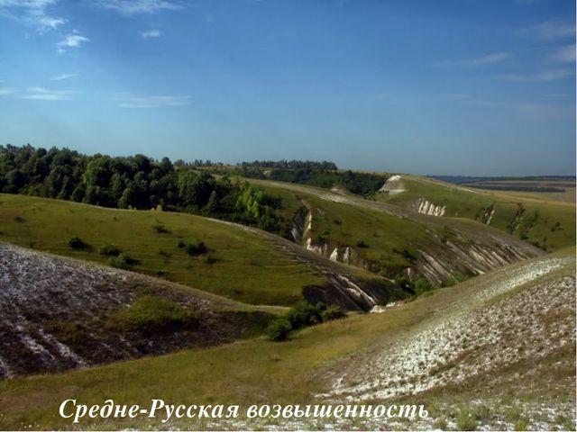 Средне-Русская возвышенность