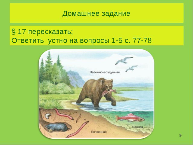 Домашнее задание * § 17 пересказать; Ответить устно на вопросы 1-5 с. 77-78