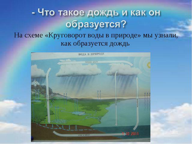 На схеме «Круговорот воды в природе» мы узнали, как образуется дождь