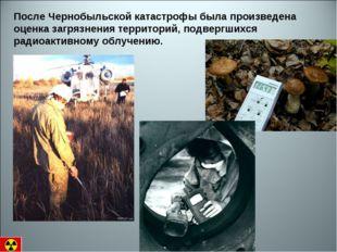 После Чернобыльской катастрофы была произведена оценка загрязнения территорий