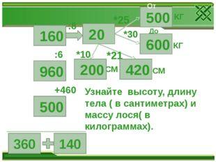 360 140 +460 :6 :8 *10 *21 *25 *30 СМ СМ КГ КГ До Узнайте высоту, длину тела