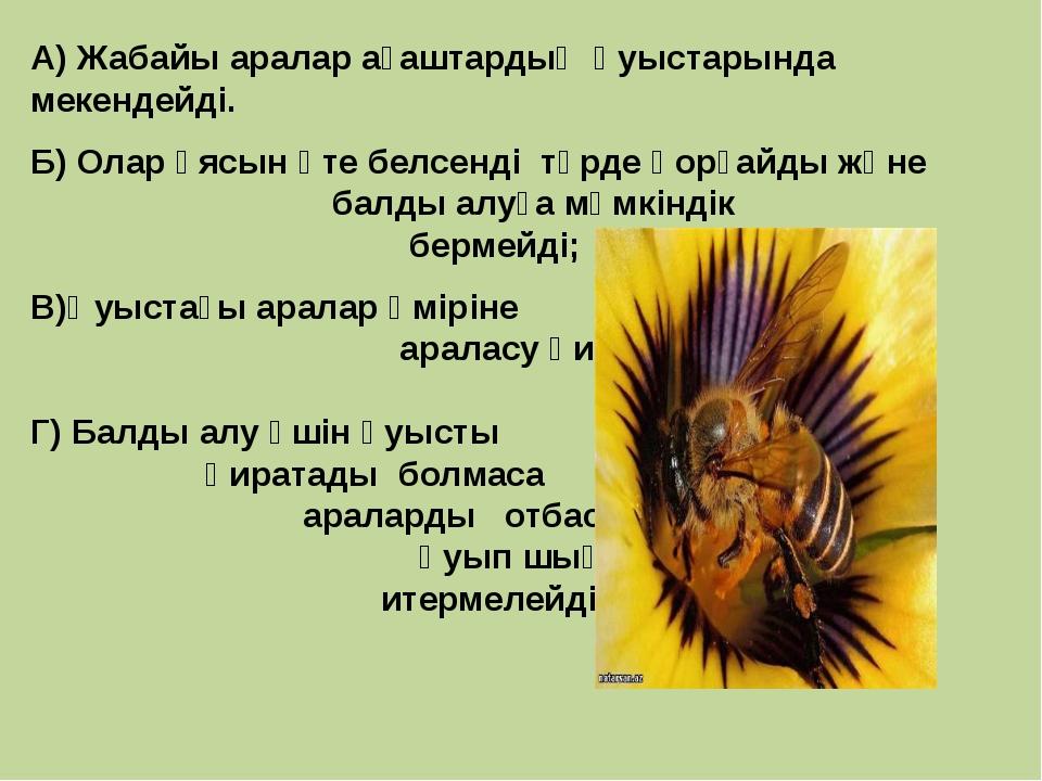А) Жабайы аралар ағаштардың қуыстарында мекендейді. Б) Олар ұясын өте белсенд...