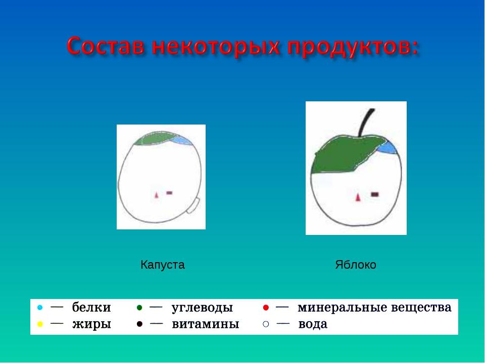 Капуста Яблоко