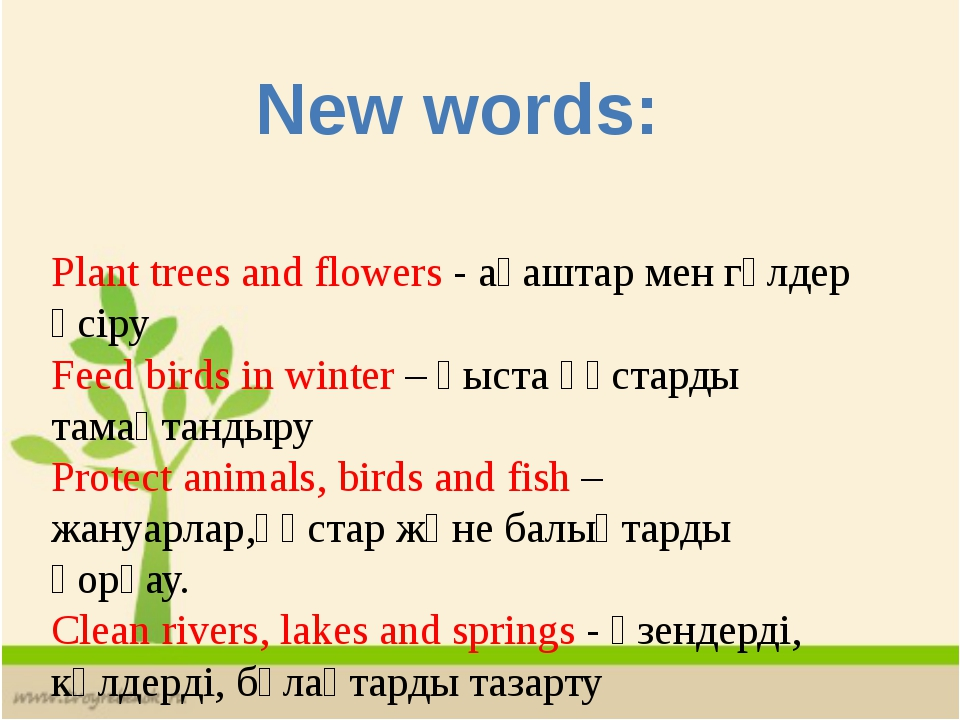 Plant trees and flowers - ағаштар мен гүлдер өсіру Feed birds in winter – қыс...