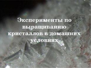 Эксперименты по выращиванию кристаллов в домашних условиях