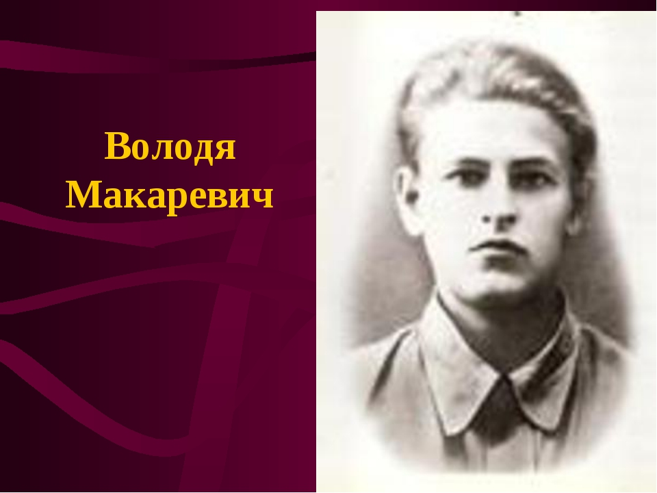 Володя Макаревич