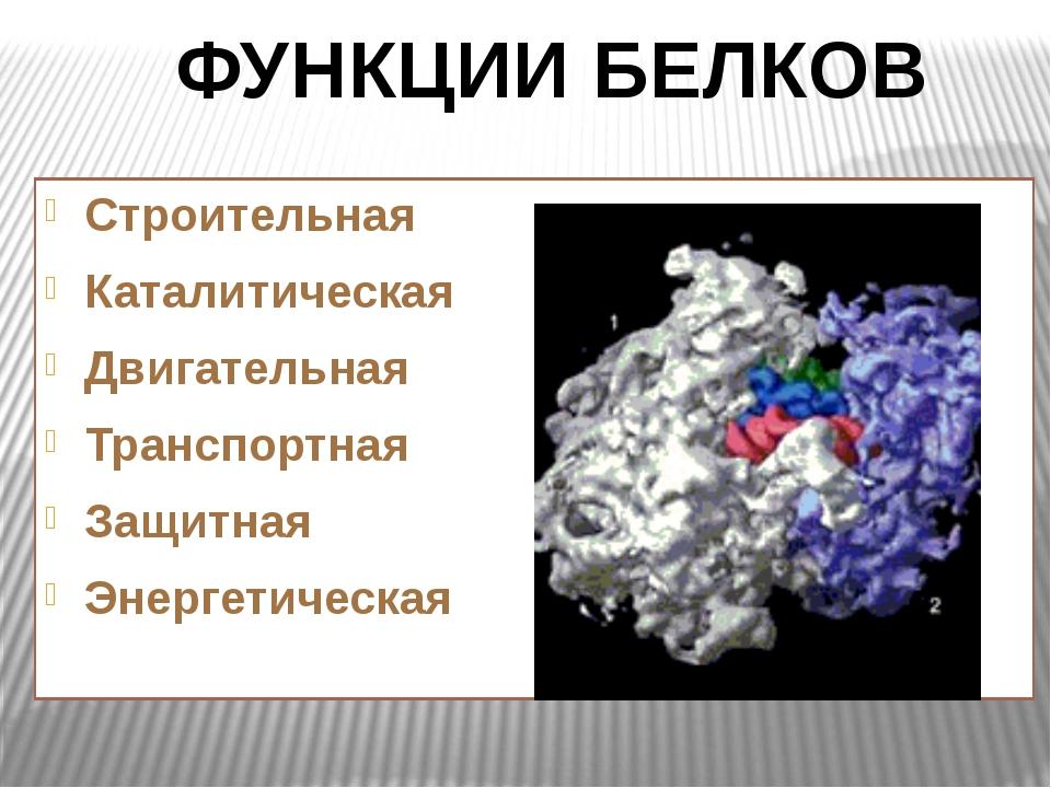 Строительная Каталитическая Двигательная Транспортная Защитная Энергетическа...