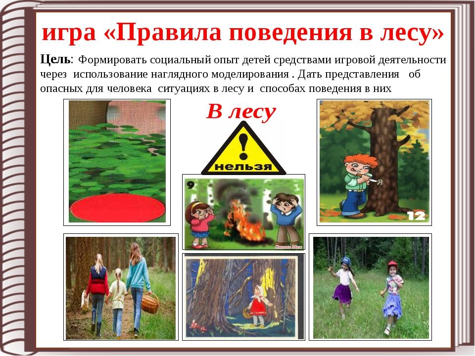игра «Правила поведения в лесу» Цель: Формировать социальный опыт детей средс...