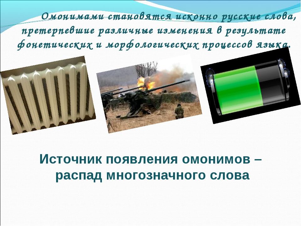 Омонимами становятся исконно русские слова, претерпевшие различные изменения...