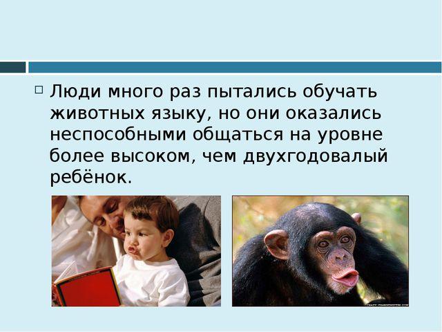 Люди много раз пытались обучать животных языку, но они оказались неспособным...