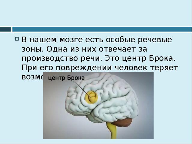 В нашем мозге есть особые речевые зоны. Одна из них отвечает за производство...