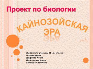 Выполнили ученицы 11 «Б» класса: Норова Мария Шафиева Алена Березовская Алена