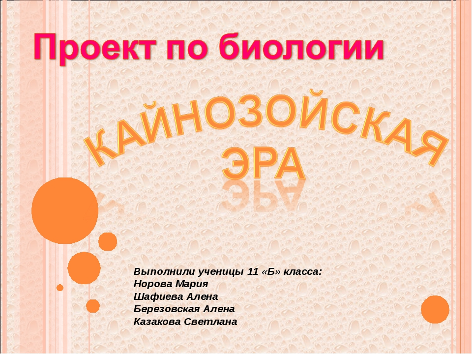 Выполнили ученицы 11 «Б» класса: Норова Мария Шафиева Алена Березовская Алена...