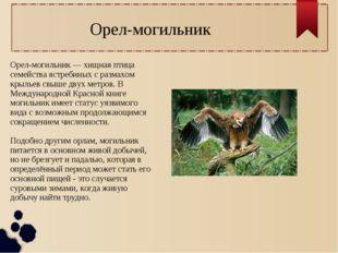 Орел-могильник — хищная птица семейства ястребиных с размахом крыльев свыше д