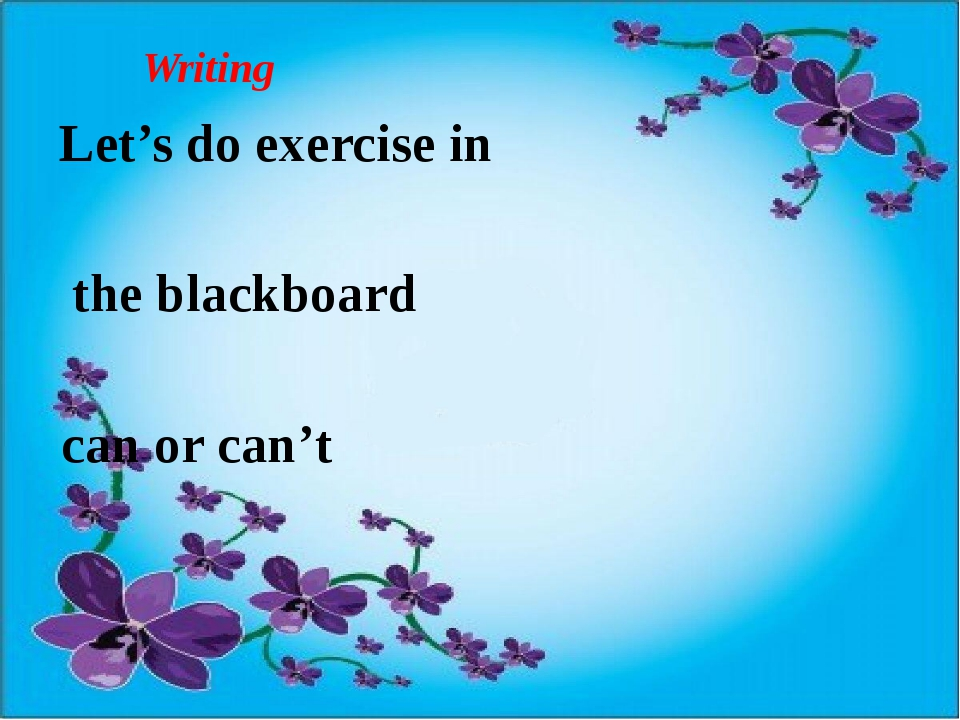 Writing Let's do exercise in the blackboard can or can't