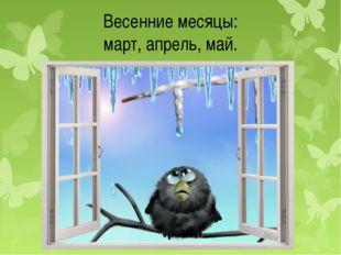 Весенние месяцы: март, апрель, май.