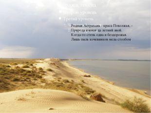 Родная Астрахань - краса Поволжья, - Природа южная да летний зной. Когда-то