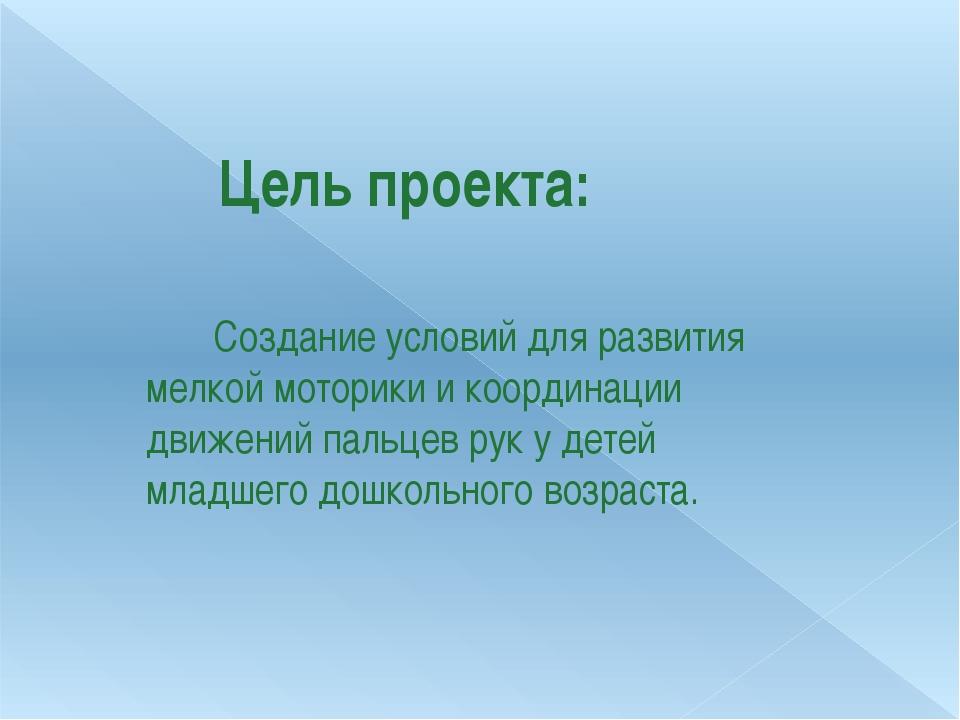 Цель проекта: Создание условий для развития мелкой моторики и координации дв...