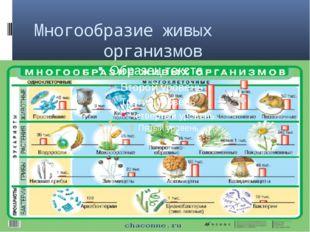 Многообразие живых организмов