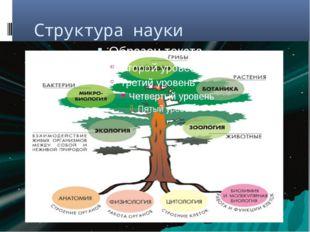 Структура науки «Биология»