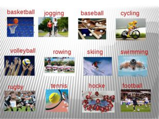 basketball football hockey tennis rugby swimming skiing rowing volleyball cyc