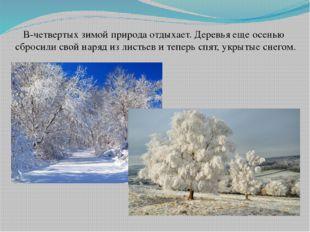 В-четвертых зимой природа отдыхает. Деревья еще осенью сбросили свой наряд из