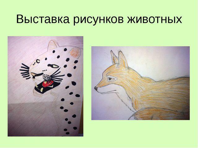 Выставка рисунков животных