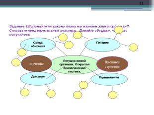 Задание 3.Вспомните по какому плану мы изучаем живой организм? Составьте пред