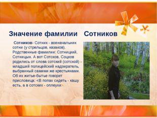 Значение фамилии Сотников Сотников-Сотник - военачальник сотни (у стрельцов