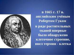 в 1665 г. 17 в. английским учёным Робертом Гуком в ряде растительных тканей в