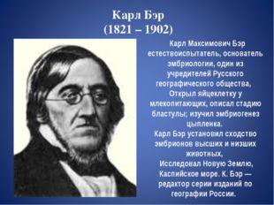 Карл Бэр (1821 – 1902) Карл Максимович Бэр естествоиспытатель, основатель эмб