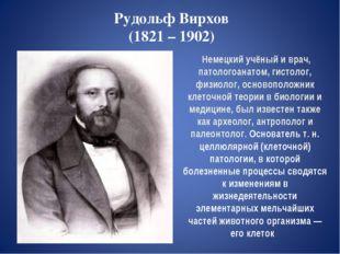 Рудольф Вирхов (1821 – 1902) Немецкий учёный и врач, патологоанатом, гистолог