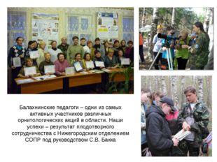Балахнинские педагоги – одни из самых активных участников различных орнитоло
