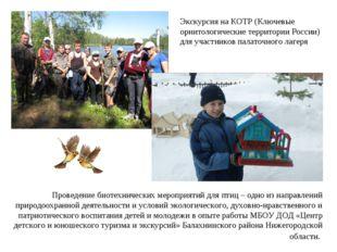 Проведение биотехнических мероприятий для птиц – одно из направлений природоо