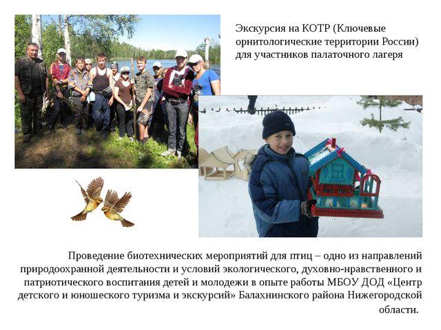 Проведение биотехнических мероприятий для птиц – одно из направлений природоо...