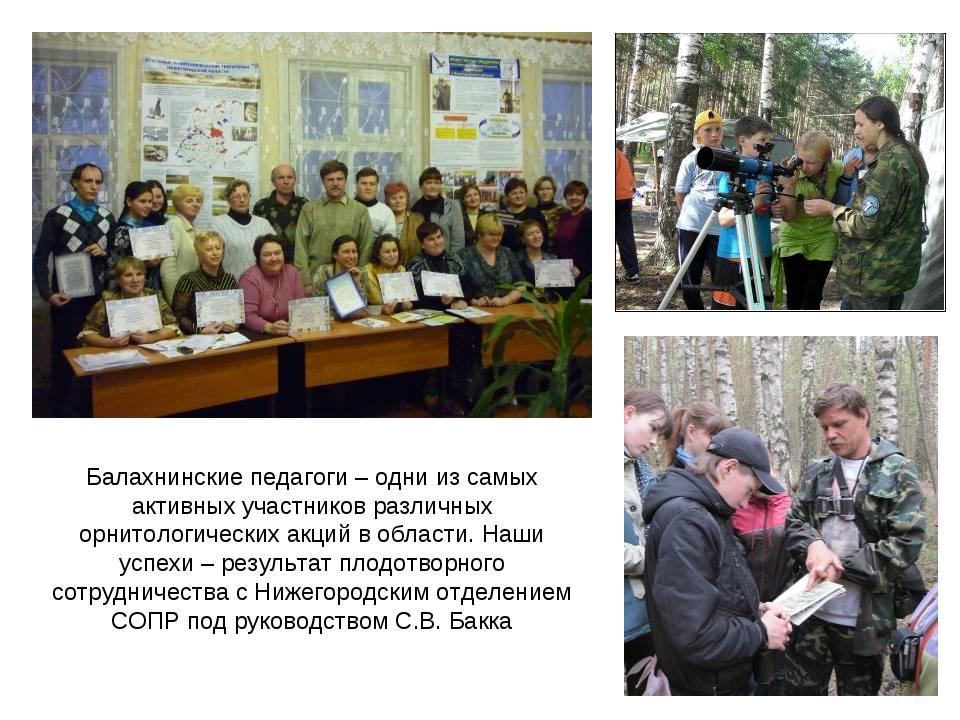 Балахнинские педагоги – одни из самых активных участников различных орнитоло...
